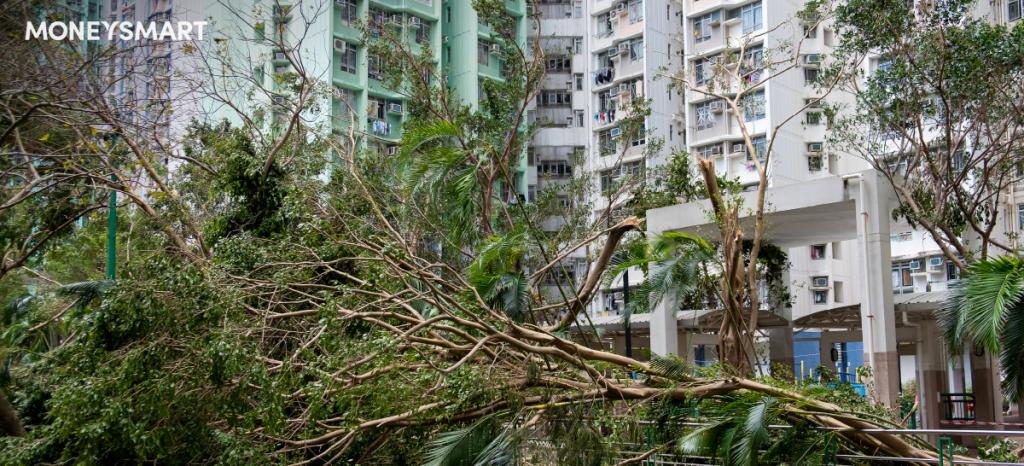 颱風襲港爆窗水浸家居保險保障範圍